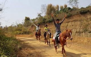 chiang mai horseback riding tours , chiang mai horse riding school, chiang mai horseback riding, chiang mai horse riding