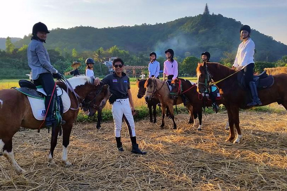 chiang mai activities, thing to do in chiang mai, chiang mai horseback riding tours , chiang mai horse riding school, chiang mai horseback riding, chiang mai horse riding