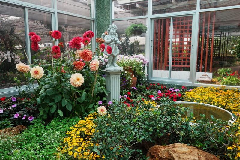 royal flora rajaphruek, royal flora garden, royal flora