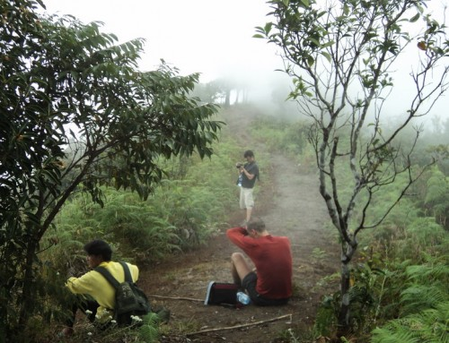 Hiking at Doi Inthanon