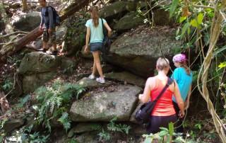 hiking at doi suthep, hiking at doi suthep - pui national park, trekking at doi suthep, trekking at doi suthep - pui national park