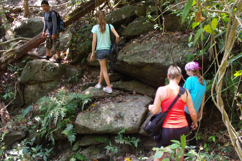 chiang mai activities, thing to do in chiang mai, hiking at doi suthep, hiking at doi suthep - pui national park, trekking at doi suthep, trekking at doi suthep - pui national park, chiang mai hiking