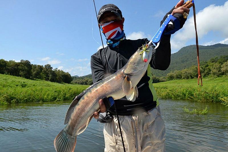 Chiang Mai Fishing Parks