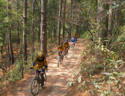 Chiang Mai Cycling Tour
