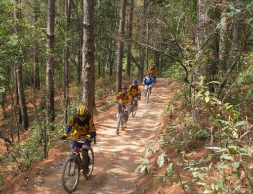 Chiang Mai Cycling Tour