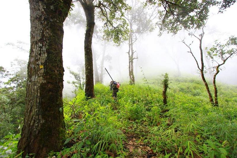Doi Langka, khun chae national park, khun chae, khun chae mountain, khun chae mount
