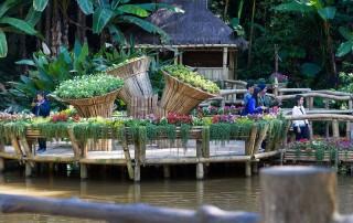 doi tung palace, doi tung, mae fah luang garden