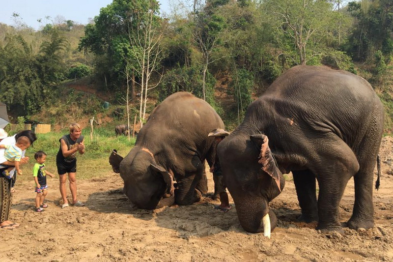 package tours from chiang mai, tours from chiang mai, private package tours from chiang mai, chiang mai package tours, private tour chiang mai, group tour in chiang mai